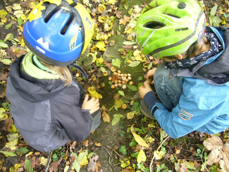 Herbstfreude 4