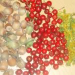 essbare Wildfrüchte