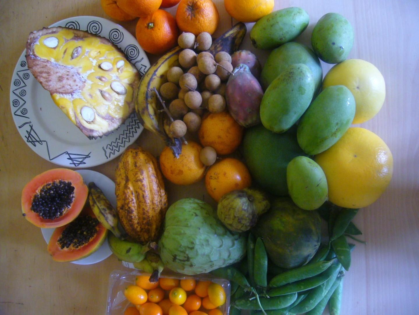 Orkos Früchte