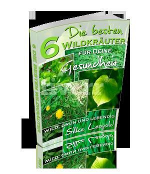 wildkraeuter-ebook-kostenlos